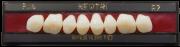 NewTRI Posterior Superior Imodonto