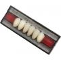 Dent Clean Anterior Inferior da Imodonto