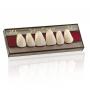 Dent Clean Anterior Superior Imodonto