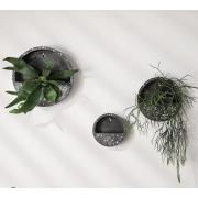 Terrário Granilite para parede de cimento preto