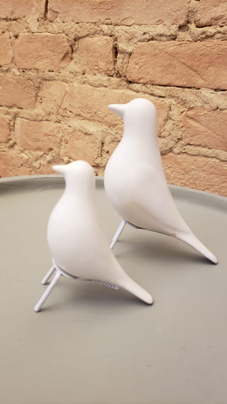Pássaro Branco P