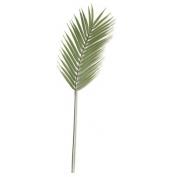 Planta Permanente - Folha de palmeira