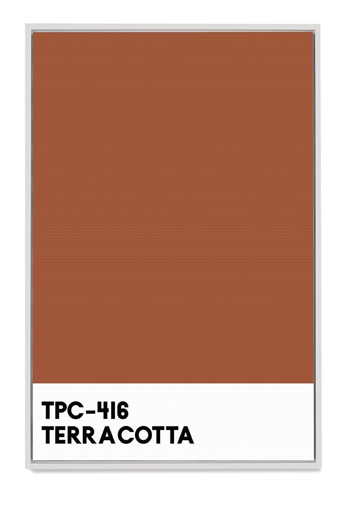 Quadro Canvas Pantone TPC-416 Terracota