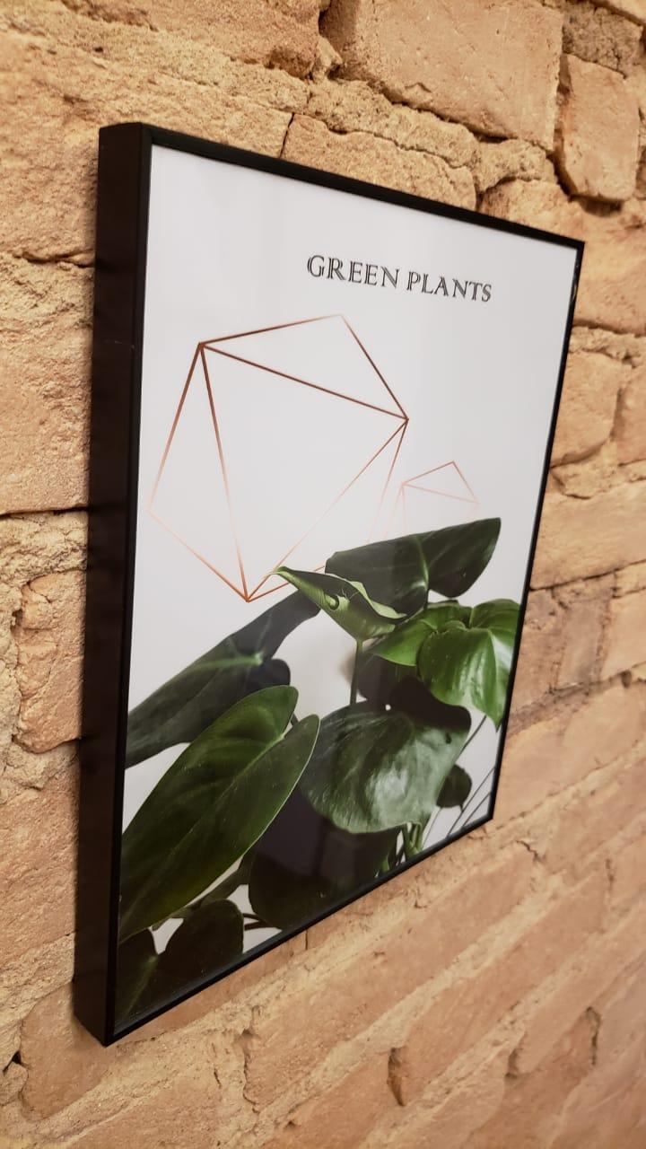 Quadro Green plants