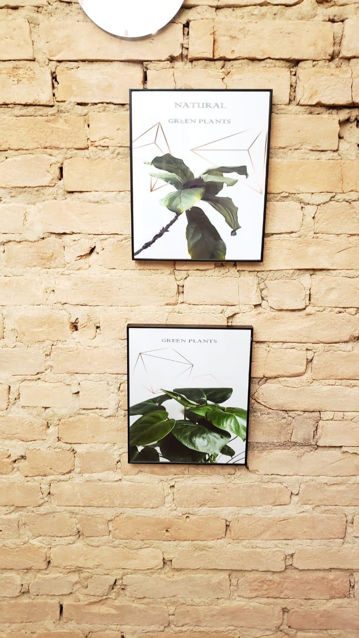 Quadro Natural Green plants