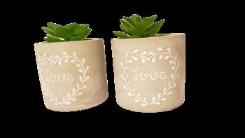 Vaso concreto Love com planta permanente (sortida)