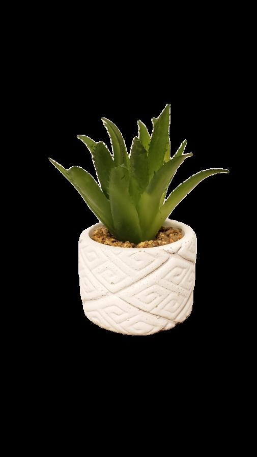 Vaso Etnico branco com planta permanente(sortida)
