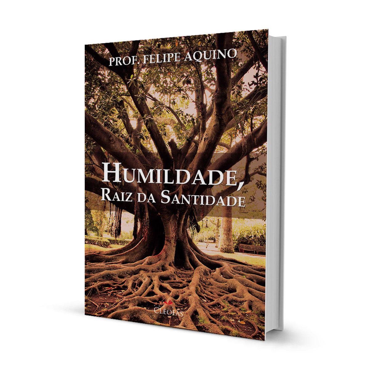 Livro Humildade, Raiz da Santidade