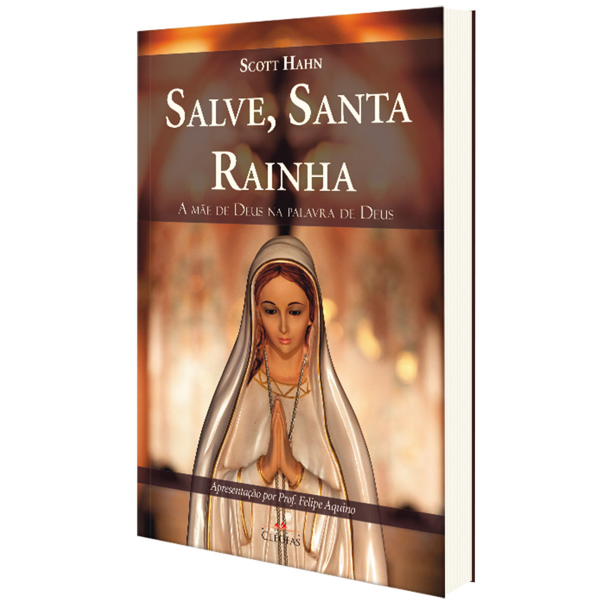 Livro Salve, Santa Rainha - Scott e Kimberly Hahn