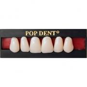Dente Popdent Anterior Superior - DENTBRAS