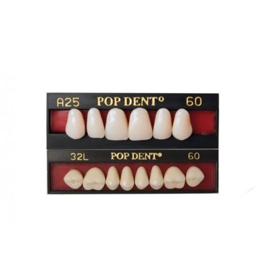 Dente Popdent Anterior Inferior - Dentbras