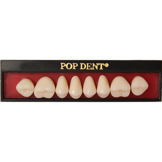 Dente Popdent Posterior Inferior - DENTBRAS