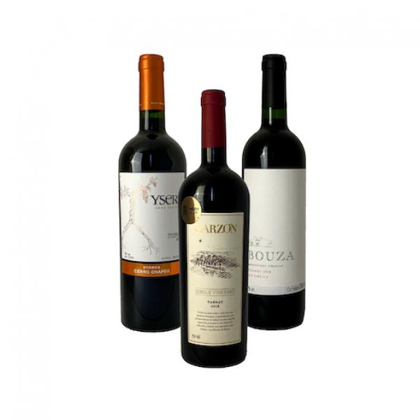 Grandes vinhos de uva Tannat