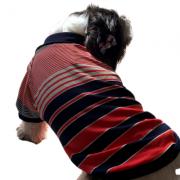 Blusa Gola Polo Listrada