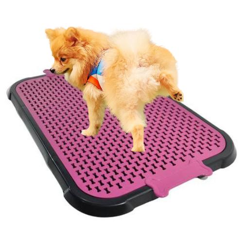 Sanitário Canino Xixi Pet Banheiro Higiênico