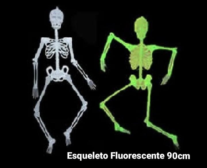Esqueleto Fluorescente 90 cm - BPG