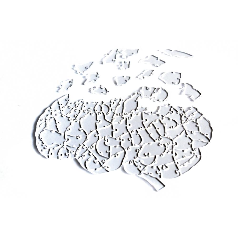 Quebra Cabeça Transparente Cérebro (102 peças) + Caixa