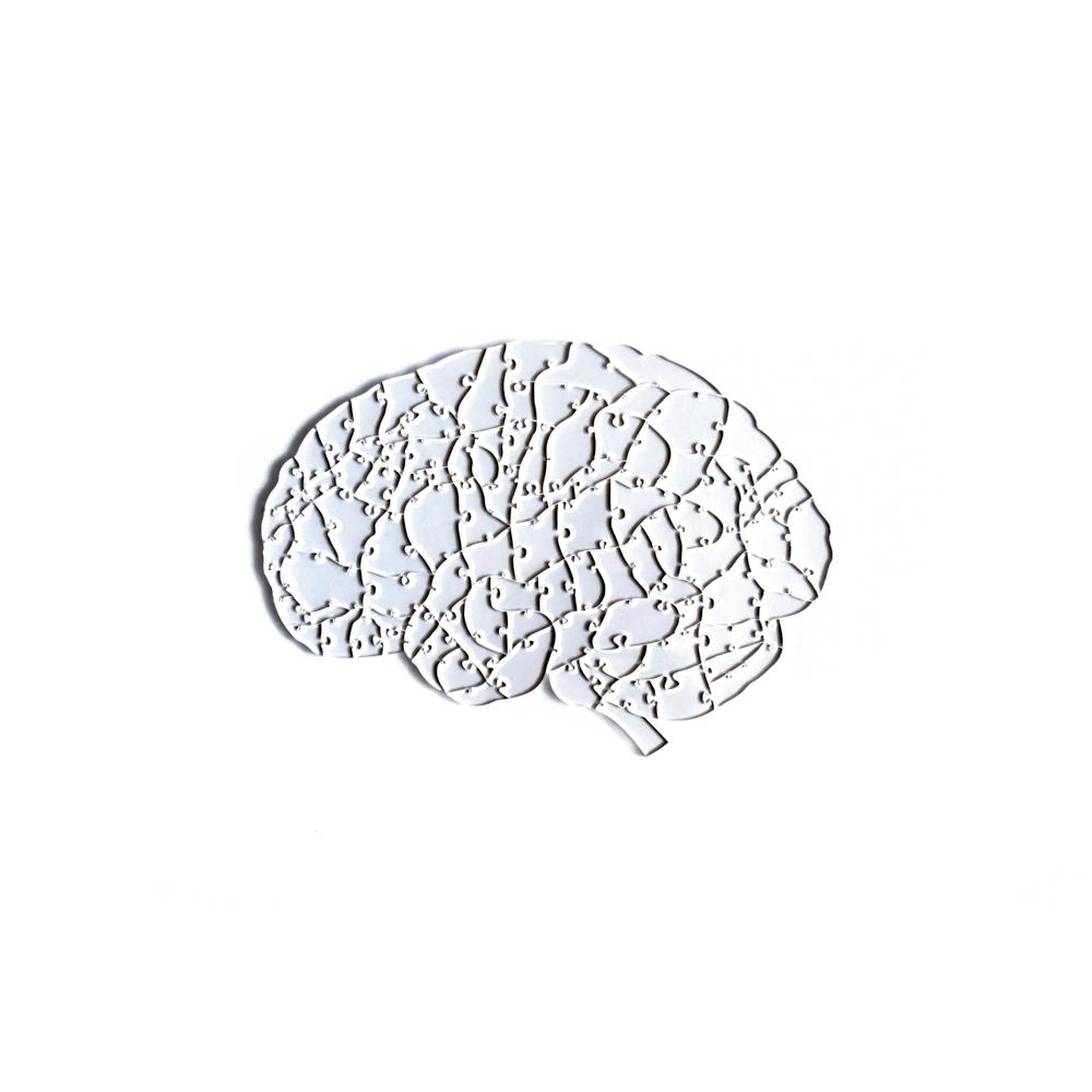 Quebra Cabeça Transparente Cérebro - Moldura Madeira