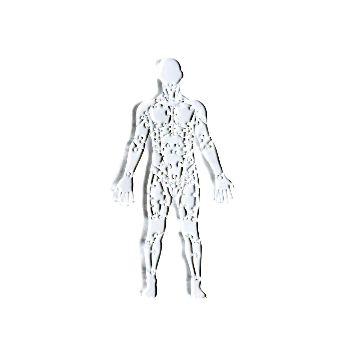 Quebra Cabeça Transparente Corpo Humano Músculos - 65 Peças