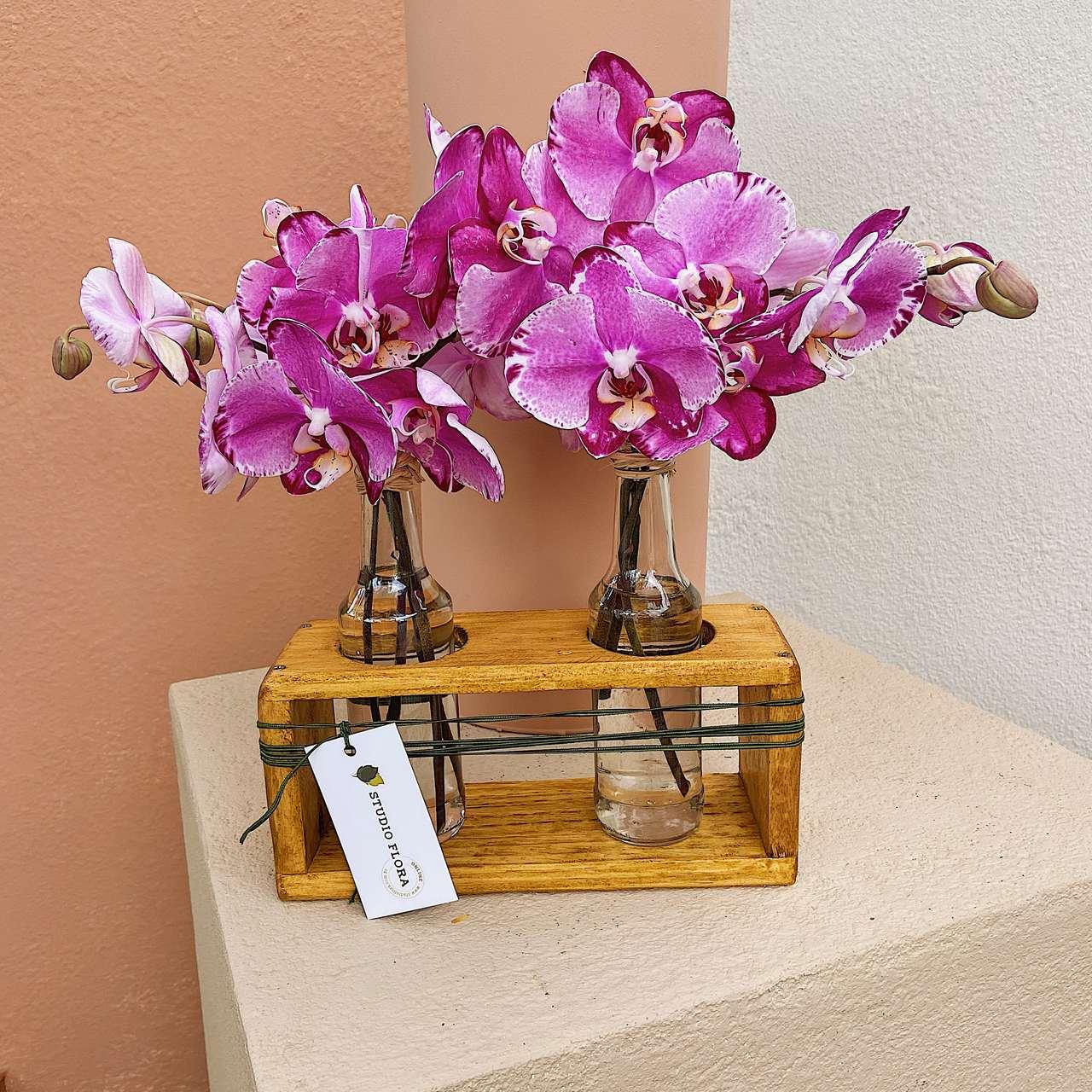 Dupla de Garrafas com Orquídeas