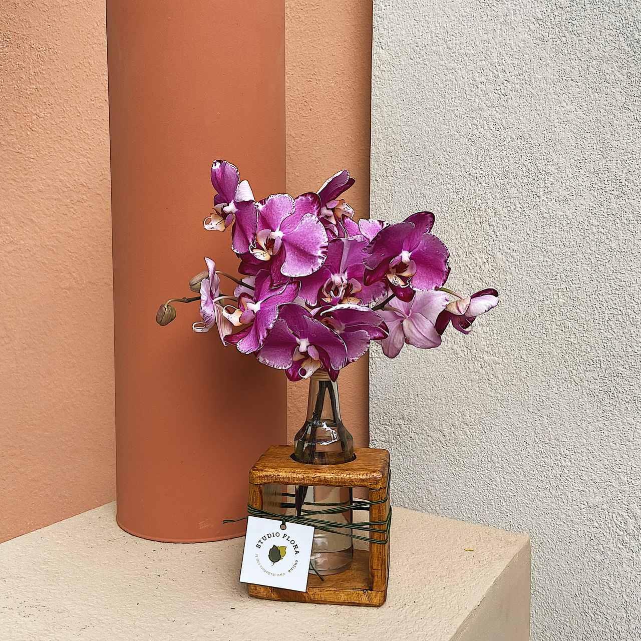 Solitário com Orquídea