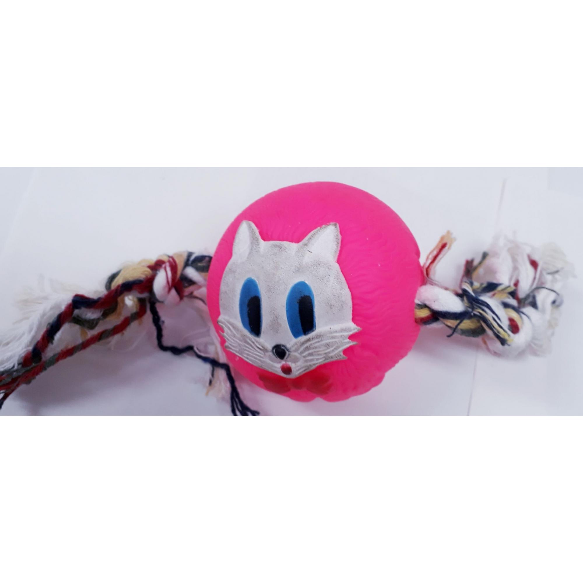 Bola Rosa Grande Plastico Com Corda