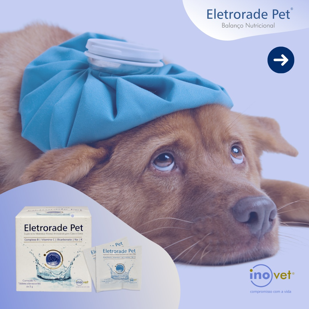 ELETRORADE PET INOVET