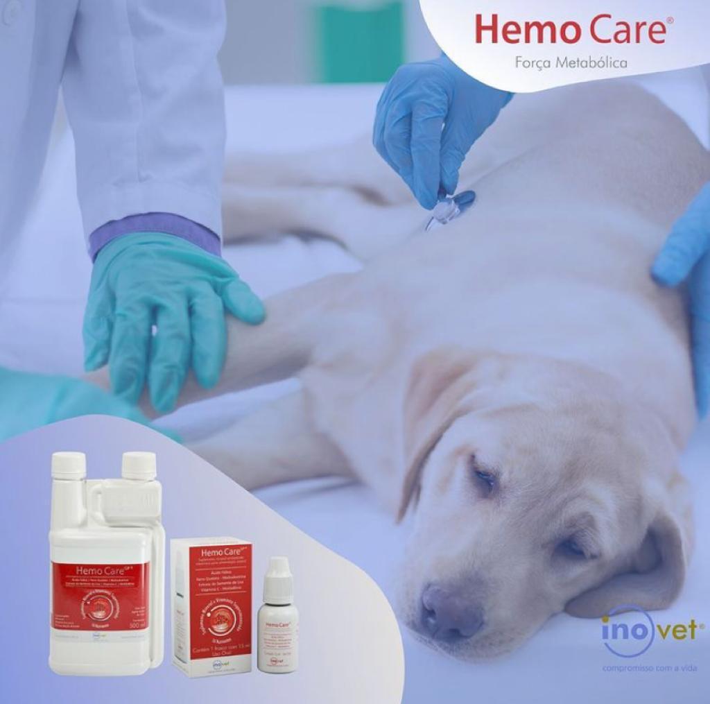 HEMO CARE INOVET 15 ML