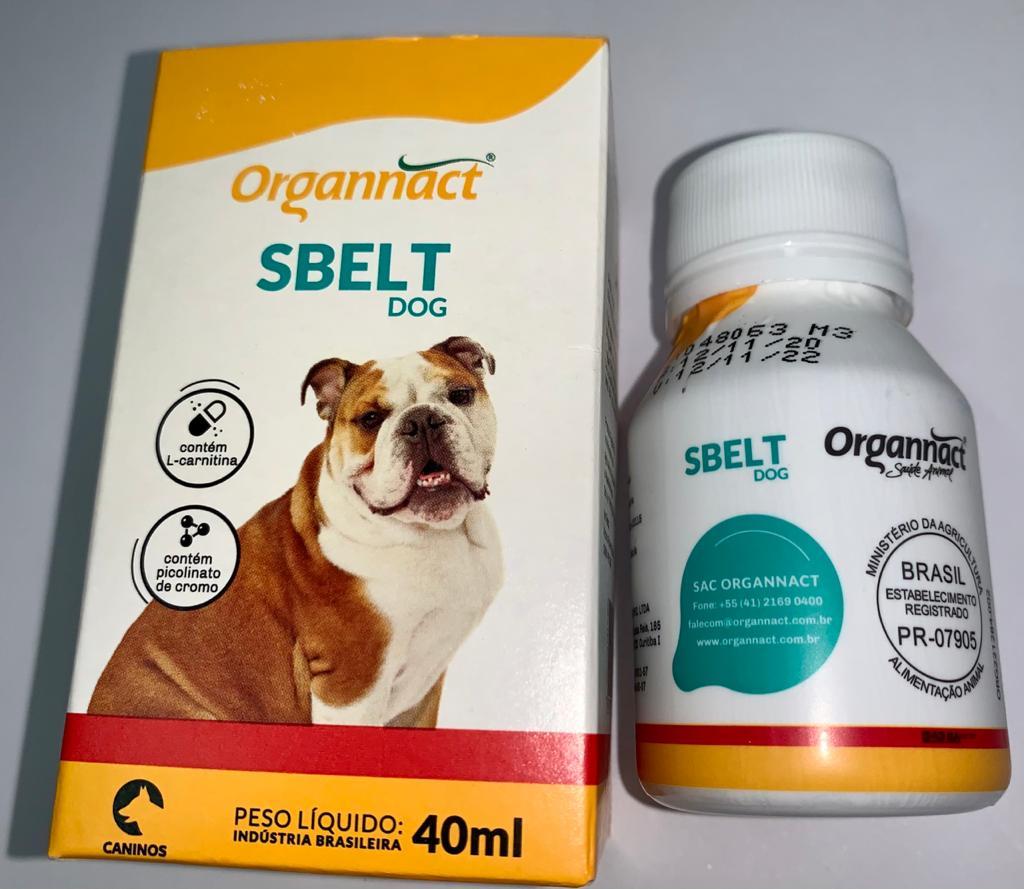 SBELT DOG ORGANNACT