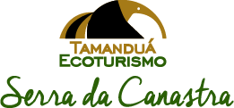 Queijo Canastra Online