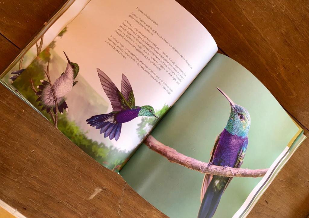 Livro Joias Aladas, os incríveis beija-flores da Serra da Canastra