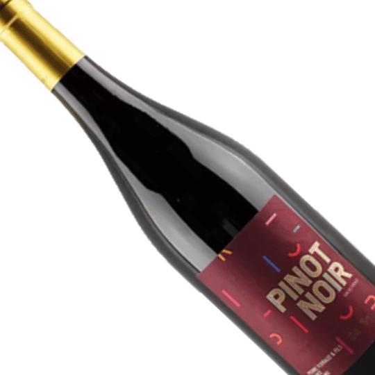 Vinho Francês Tinto P. Ferraud & Fils Pinot Noir - 750ML