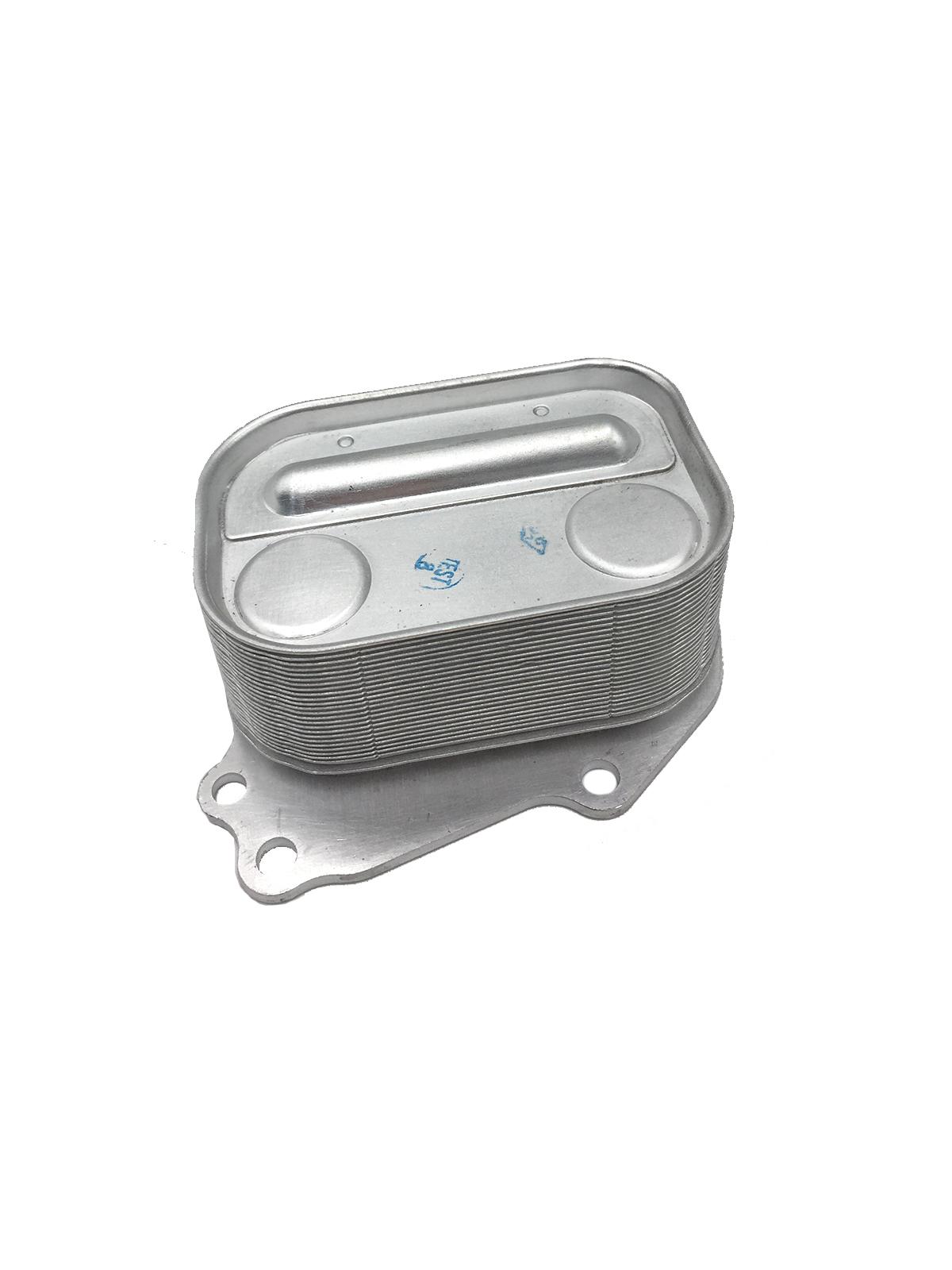 Trocador de Calor (Radiador) 5989070066 - BMW