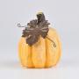 Abóbora Rústica Amarelo YP-08 C