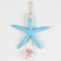 Penca Estrela Azul Claro em Resina CY-56 B