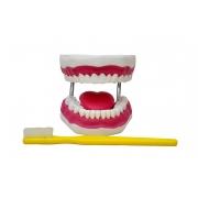 Arcada Dentária Ampliada com língua e escova - SDORF - Cód: SD-5059