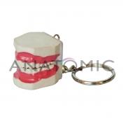 Chaveiro Arcada com Língua (05 Unidades) ANATOMIC - Cód: TGD-0185-G