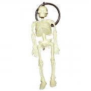 Chaveiro Mini Esqueleto (05 Unidades) - ANATOMIC - Cód: TGD-0185-A