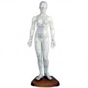 Modelo Feminino de Acupuntura 48cm COLEMAN - COL 1504