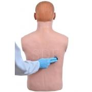 Simulador de Ausculta Cardiopulmonar c/ Controle Remoto- Sdorf - Cod: SD-4040