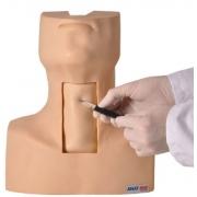 Simulador de Traqueostomia - ANATOMIC - Cód: TGD-4058