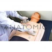 Simulador de Treinamento ACLS (RCP e ECG) ANATOMIC - Cód: TGD-4075-A