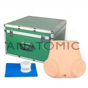 Simulador Ginecológico com Útero Saudável e Patológicos - ANATOMIC - Cód: TGD-4024