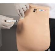 Simulador para Treino de Injeção Intramuscular Glúteo com dispositivo de Advertência ANATOMIC - Cód: TGD-4009-S