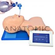 Simulador para Treino de Intubação Adulto com Dispositivo de Controle - ANATOMIC - Cód: TGD-4007