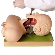 Simulador para Treino de Intubação Adulto com Dispositivo de Controle - ANATOMIC - Cód: TGD-4007-A