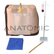 Simulador para Treino de Punção e Infusão Lombar - ANATOMIC - Cód: TGD-4009-P