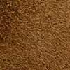 SL1281 - Caramelo