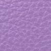 SL2181 - Violeta