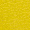 SL2181 - Lemon